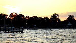 Trees just beyond the water in beach at sunset